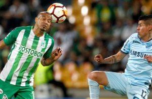 Bolivar - I pronostici di Copa Libertadores